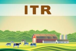 Imposto sobre a Propriedade Territorial Rural (DITR): Prazo para entrega